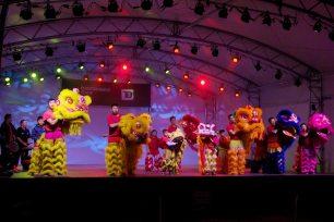 jing wo lion dance calgary 2015 zoo illuminasia